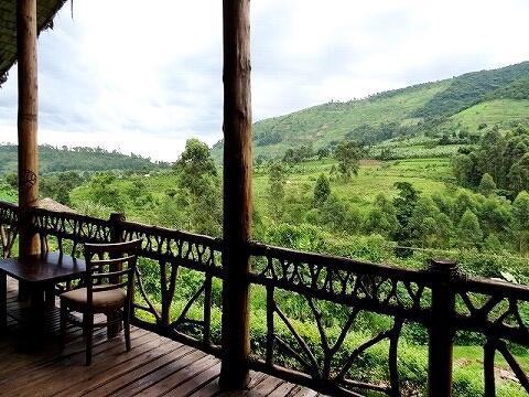 ウガンダ マホガニースプリングス レストラン 景色
