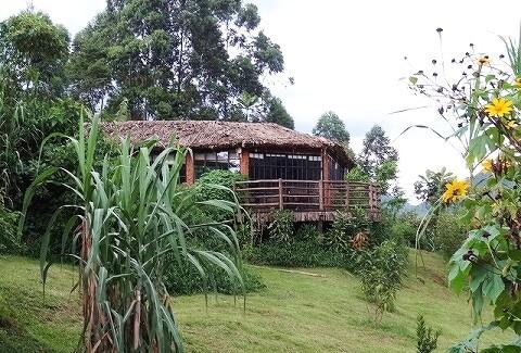 ウガンダ マホガニースプリングスホテル プレジデンシャルスイート