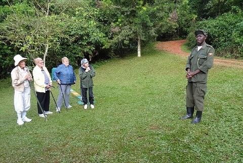 ウガンダ ゴリラトレッキング 説明