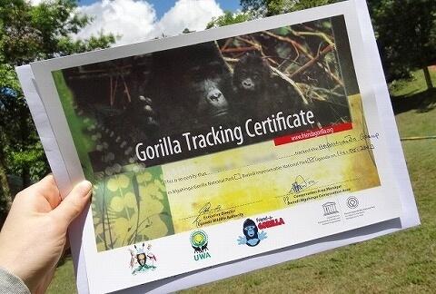 ウガンダ ゴリラトレッキング証明書