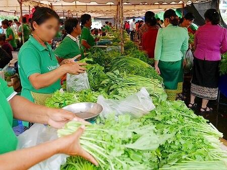 ラオス ビエンチャン オーガニックマーケット 市場 FA NGUM PARK ファーグム公園 野菜