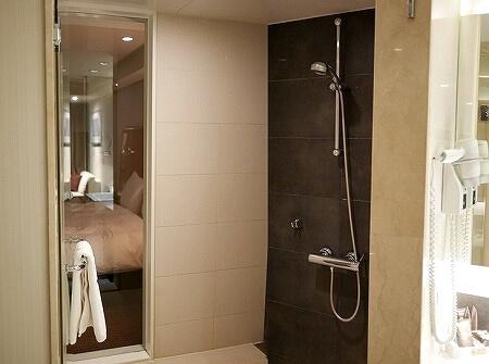 ノボテルアンバサダー大邱 ホテル テグ スーペリア 部屋 バスルーム