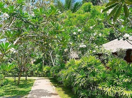 スリランカ カルナカララ・アーユルヴェーダ・スパ&リゾート 滞在記 karunakarala