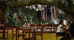 コロンボ「NUGA GAMA」大きなガジュマルの木の下で頂くスリランカ料理ビュッフェ♪(シナモングランドコロンボホテル内レストランレポ③)