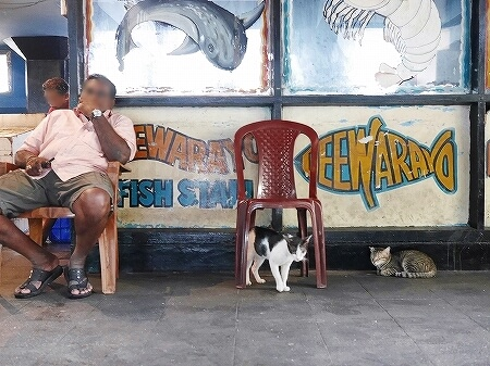 スリランカ コロンボ コルピティアマーケット Kollupitiya Market 魚屋