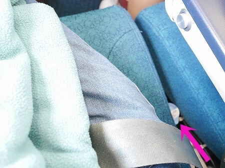 ベトナム航空搭乗記 成田-ホーチミン VN301 VN302 座席