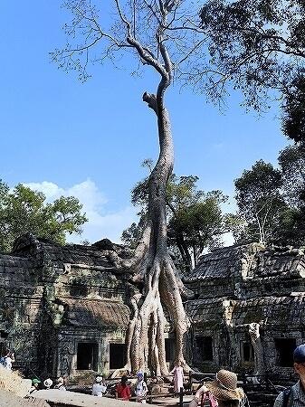 タ・プローム カンボジア 遺跡