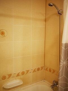 ウラジオストク ベルサイユホテル ヴェルサイユホテル 宿泊記 レビュー 口コミ 部屋 シングルルーム ロシア バスルーム シャワー