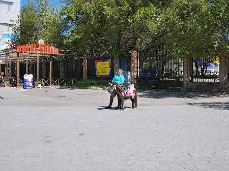 ウラジオストク 遊園地 観覧車 ポニー 馬 ユニコーン