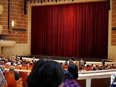ウラジオストク マリインスキー劇場 マリインスキー沿海州劇場 マリンスキー劇場 バレエ鑑賞 座席 見え方