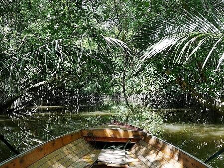 ブルネイ カンポン・アイール 世界最大の水上集落 ボートクルーズ 旅行記 ブログ 観光 金曜礼拝 お祈り テングザル