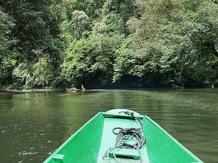 ブルネイ ウル・テンブロン国立公園 日帰りツアー ウル・トゥンブロン国立公園、Ulu Temburong National Park 英語ガイド Freme Travel フレーミートラベル 旅行記 ブログ キャノピーウォーク ロングボート