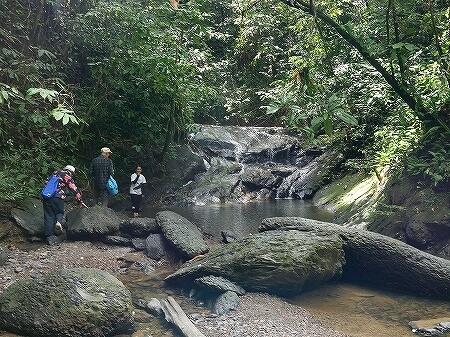 ブルネイ ウル・テンブロン国立公園 日帰りツアー ウル・トゥンブロン国立公園、Ulu Temburong National Park 英語ガイド Freme Travel フレーミートラベル 旅行記 ブログ 道 ドクターフィッシュの滝