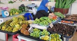 ブルネイ「キアンゲマーケット」ローカル食材や〇〇〇が大集結!見応え抜群のおすすめ観光スポット♪ (Kianggeh Market)