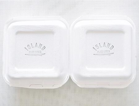 【日本】「アイランドプレートランチ」のハワイ料理がおいしー!特にガー...