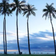 ハワイ一人旅♡「アラモアナビーチパーク」でしっとりサンセットタイム♪「アラモアナホテル」最寄りのビーチ