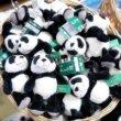 香港空港のおすすめお土産屋さん「discover HK」かわいすぎるパンダグッズは必見♡